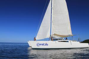 Coral Cats Day Sails Tour Packages